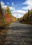 与狗的秋天结构 库存照片