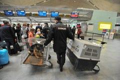 与狗的警察在机场 免版税库存图片