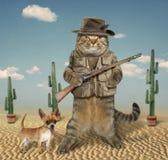 与狗4的猫猎人 免版税库存图片