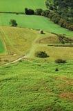 与狩猎风雨棚的绿色风景 免版税库存图片
