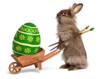 与独轮车和绿色复活节的滑稽的复活节兔子兔子 免版税图库摄影