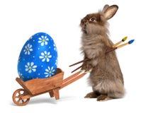 与独轮车和蓝色复活节e的滑稽的复活节兔子兔子 免版税库存图片