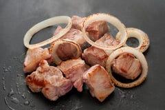 与猎户星座的烤肉 库存照片