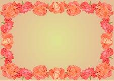 与猩红色玫瑰装饰品框架的背景 库存图片