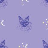 与猫、星和月亮的无缝的传染媒介样式在蓝色背景 免版税库存照片