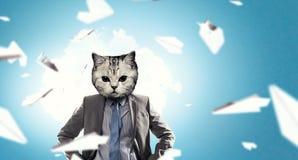 与猫头的商人 混合画法 免版税库存照片