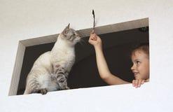 与猫的小女孩作用。 库存照片