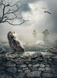 与猫头鹰的万圣夜神秘的背景在石墙上 免版税库存图片