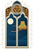 与猫头鹰的污迹玻璃窗 库存图片