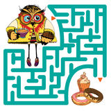 与猫头鹰的滑稽的迷宫 库存图片