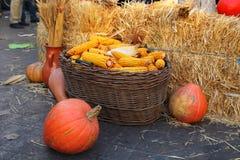 与玉米穗的充分的篮子 库存图片