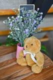 与玩具熊的可喜的迹象 库存图片