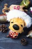 与玩具狗的圣诞节装饰 库存图片