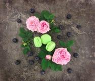 与玫瑰和叶子的装饰框架在白色背景 库存照片