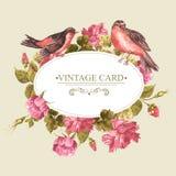 与玫瑰和鸟,葡萄酒卡片的百花香 库存照片