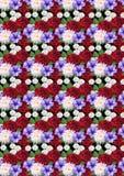 与玫瑰大丽花翠菊的杂色的无缝的背景 库存照片