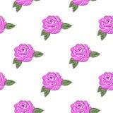 与玫瑰的图象的无缝的样式 库存图片