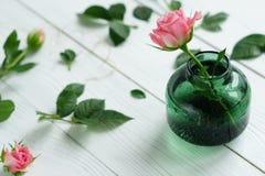 与玫瑰的平的位置静物画 库存图片