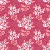 与玫瑰的无缝的样式在桃红色树荫下  图库摄影