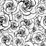 与玫瑰的无缝的黑白背景 免版税库存照片