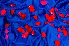 与玫瑰的瓣的抽象样式 库存照片