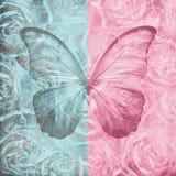 与玫瑰的纸和butterfy 图库摄影