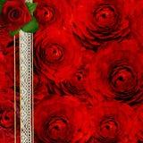 与玫瑰的背景盖子des的 免版税库存照片