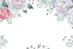 与玫瑰的花卉框架和在白色背景的其他Florals 免版税库存图片