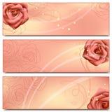 与玫瑰的花卉横幅。 图库摄影