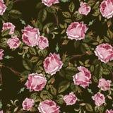 与玫瑰的葡萄酒无缝的样式 免版税库存图片