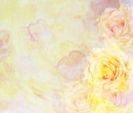 与玫瑰的风景抽象花卉背景 免版税库存照片