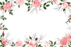 与玫瑰的贺卡,水彩,可以使用当邀请卡片为婚姻,生日和其他假日和夏天 免版税库存照片