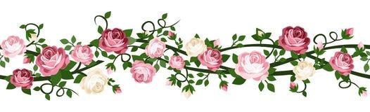 与玫瑰的水平的无缝的背景。 图库摄影