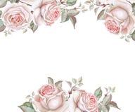 与玫瑰的水彩花卉框架在白色 库存照片