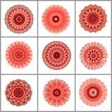 与玫瑰色星的礼品包装材料纸数字式艺术设计开花 免版税库存图片