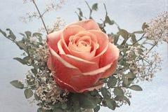 与玫瑰色花、甜砍肉刀和蓝莓叶子的小的诗句 图库摄影