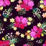 与玫瑰色花和叶子的浪漫花卉无缝的样式 不尽纺织品的墙纸的印刷品 手拉的水彩 免版税库存照片