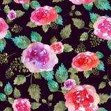 与玫瑰色花和叶子的葡萄酒花卉无缝的样式 不尽纺织品的墙纸的印刷品 手拉的水彩 库存图片