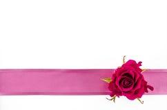 与玫瑰色花和桃红色丝带的空的明信片背景 免版税库存照片
