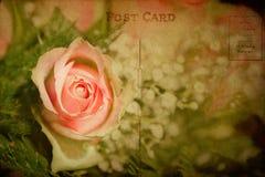 与玫瑰色花的葡萄酒织地不很细明信片 免版税库存照片