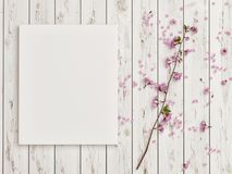 与玫瑰色花装饰的假装海报在白色木地板上 图库摄影