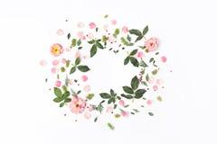 与玫瑰色花,瓣,红色莓果,叶子的花卉圆的框架 免版税库存图片