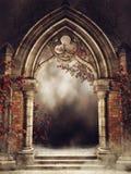 与玫瑰色藤的葡萄酒曲拱 皇族释放例证