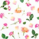 与玫瑰花、瓣和绿色的花卉样式在白色背景离开 平的位置,顶视图 免版税库存照片