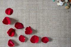 与玫瑰花瓣的浪漫背景 免版税图库摄影