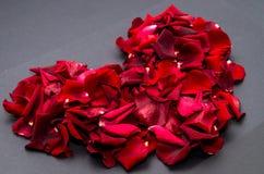 与玫瑰花瓣的红色心脏 免版税库存图片