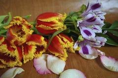 与玫瑰花瓣的花束 免版税库存图片