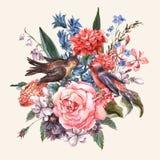 与玫瑰,风信花,鸟的百花香 向量例证