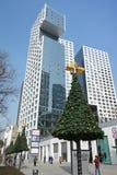 与现代大厦的圣诞树 库存图片