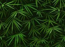 与现实竹叶子的热带无缝的样式 皇族释放例证